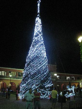 Acayucan, Messico: Christmas tree at the plaza