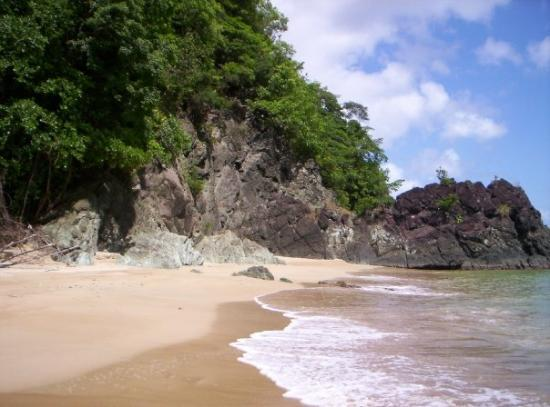 Charlotteville, Tobago : Campleton Bay