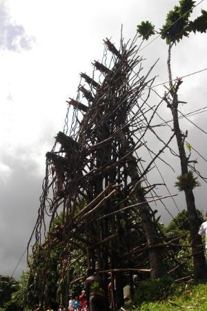 Pangi, Vanuatu: There is absolutely not even ONE nail used to build this....all branches and vines.