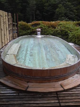 Hayakawa-cho, Japan: 望渓の湯
