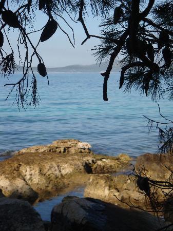 Pakostane, Kroatien: En plein dans une pinède!