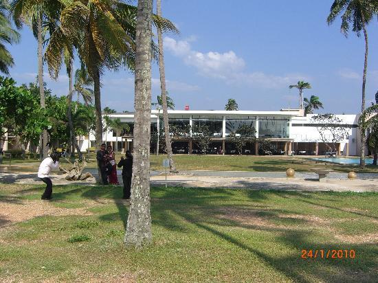 Pegasus Reef Hotel: hotel rear