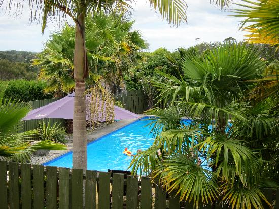 Kerikeri Homestead Motel & Apartments: A cool pool at Kerikeri Homestead Motel