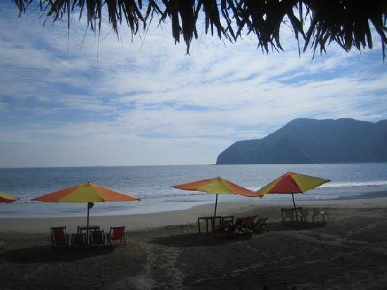 Restaurante El Indio: This was my view @ lunch!