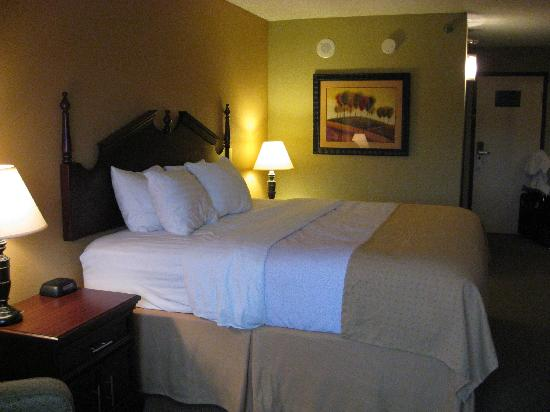 The Hotel at Wichita Falls: King Size Non Smoking