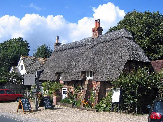 Brockenhurst, UK: Thatched Cottage