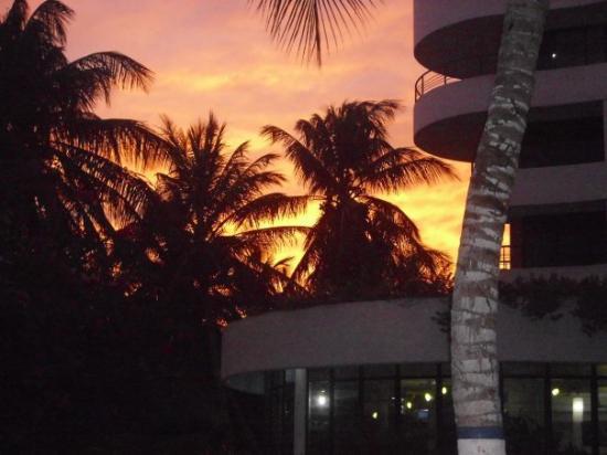 El Yaque Paradise Hotel: que dire de ce beau couché de soleil caché par ces palmiers....