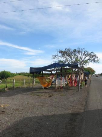 Колима, Мексика: Roadside Tecoman Hamacas stand