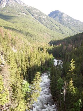 McLeod, MT: around Camp on the Boulder