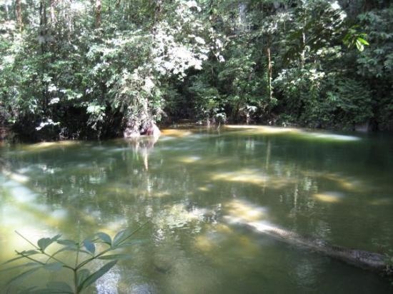 Gunung Mulu National Park, Malaysia: Clearwater river