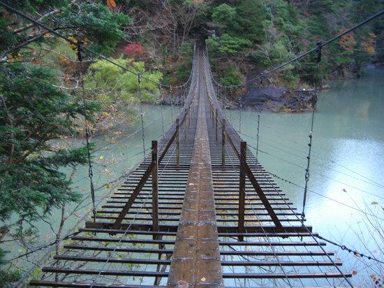 Kawanehon-cho, Giappone: 夢の吊り橋の上より・・・