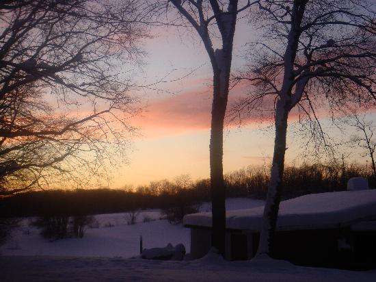 Fallen Tree Farm Bed and Breakfast: Sunset!