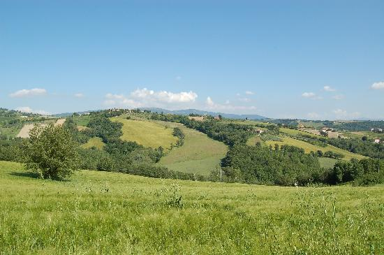 Agriturismo Casale dei Frontini: panorama - landscape