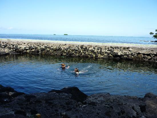 Safua Hotel : fresh water swimming at the Safua Village pool with fish