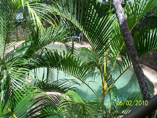 Palms at Trinity: View of Pool from Balcony