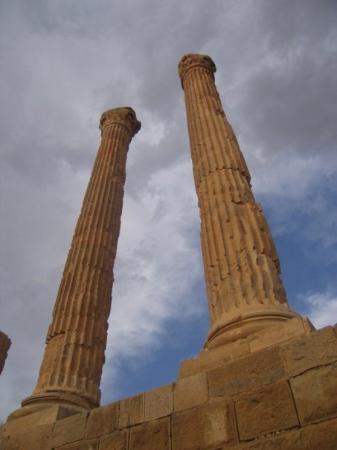 提姆加德 的照片 - Timgad照片 - Tripadvisor