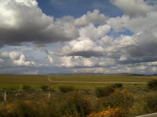 Durango, México: Viajar por Mexico y sobre todo si lo haces por carretera es un deleite, si se qeu no todas las c