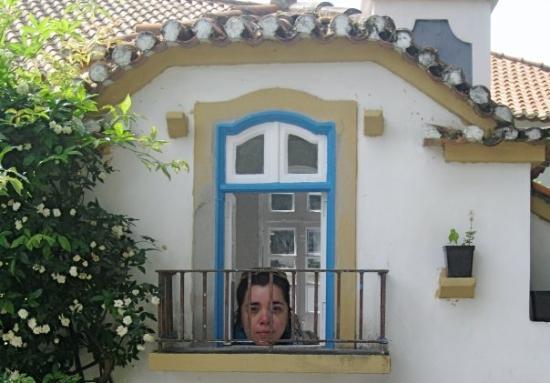 Portugal dos Pequenitos ภาพ