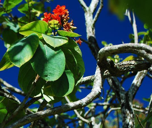 Kauai Photo Tours: Look Everywhere!