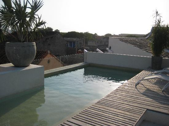 Hotel Casa Lola: rooftop pool. it's small but refreshing and has jets like a jacuzzi