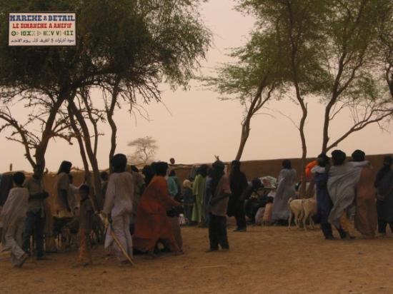 Kidal, Mali: Marché au bétail à Anéfif