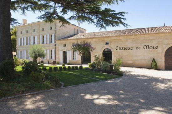 Chateau de Mole