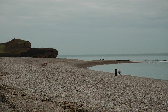 The Long Range Hotel: Budleigh seafront on a January day - gorgeous so imagine it in the summer!