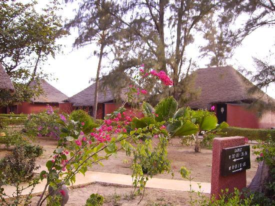 Royal Horizon Baobab : camere nel giardino