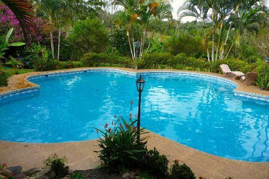 El Cafetal Inn: the HUGE pool