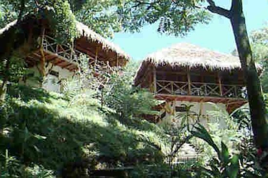 Tabulia Tree Hotel & Villas: Dort haben wir gewohnt
