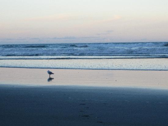 Waihi Beach Lodge: sunset at Waihi Beach