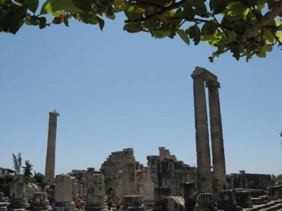 Didim, Turkiet: Didyma temple of Apollo