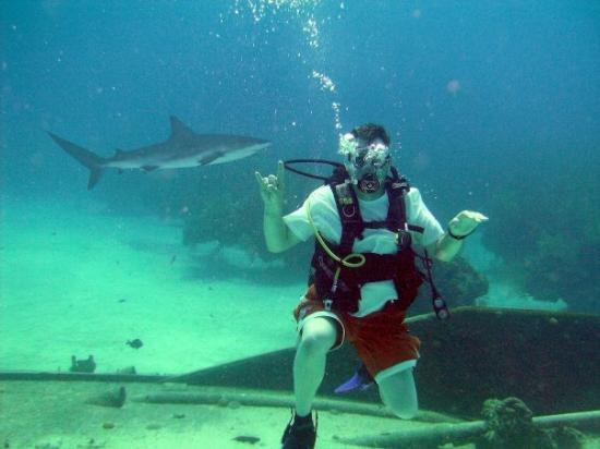 Grand Bahama Island: JK