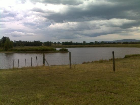 Talga Estate: photo of dam on vineyard