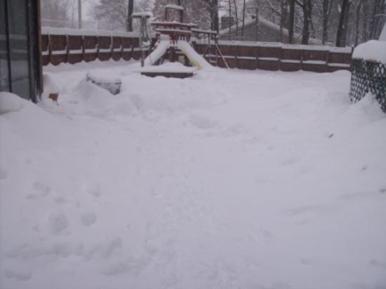 Waynesboro, VA: backyard snow 2010