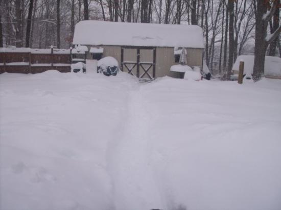 Waynesboro, VA: another pic of snow 2010
