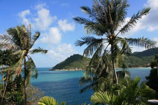 Thong Nai Pan Noi: The View from our Balcony