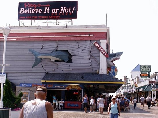 ‪Ripley's Believe it or Not! Ocean City‬