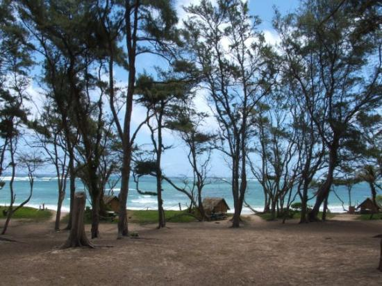 Our campground picture of malaekahana beach campground for Oahu camping cabins