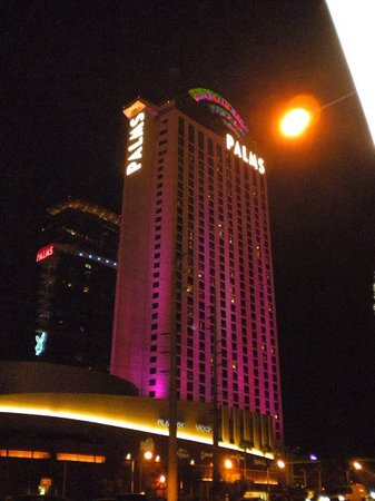 ‪Casino at the Palms Resort‬