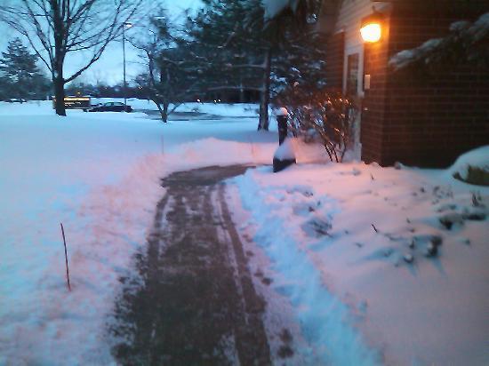 Residence Inn Ann Arbor: 新館北側の入口です