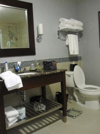 The Westin Mount Laurel: Sink and toliet