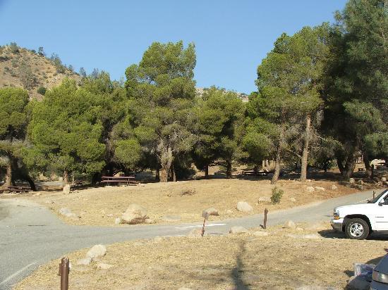 Boulder Gulch Campground: The Best sites in Boulder Gulch are found under those trees
