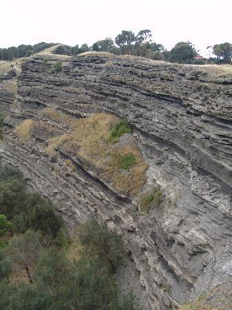 Tower Hill Wildlife Reserve: Very distinct from the sandstone cliffs along the southern Victorian coast