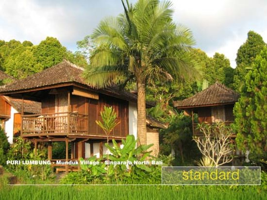 Puri Lumbung Cottages: Standard room