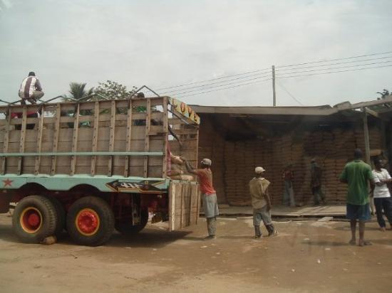 Salaga Foto