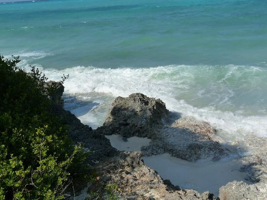 The Zanzibari : Beach????