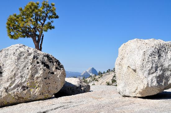 Tuolumne Meadows : Olmsted Point