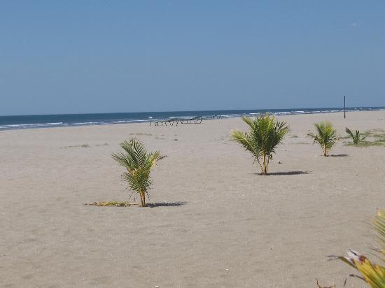 Barcelo Montelimar : Entrée à la plage, immense