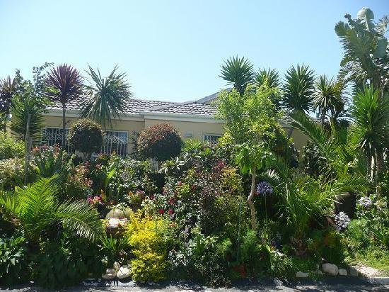 Cape Town Seamore Express Tours and Guesthouse: Garten